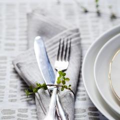 KAARNA tablecloth and PALTTINA napkin