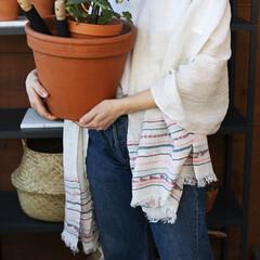 lapuan kankurit WATAMU scarf grey-bordeaux