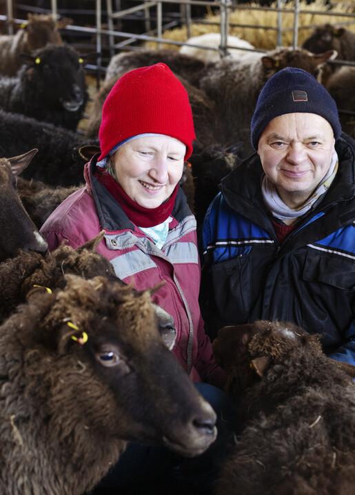 Lapuan Kankurit finnish sheep wool
